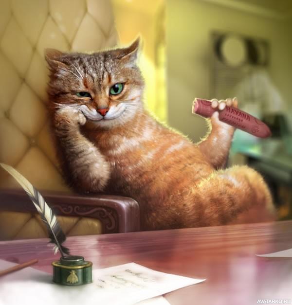 Прикольная ава кот