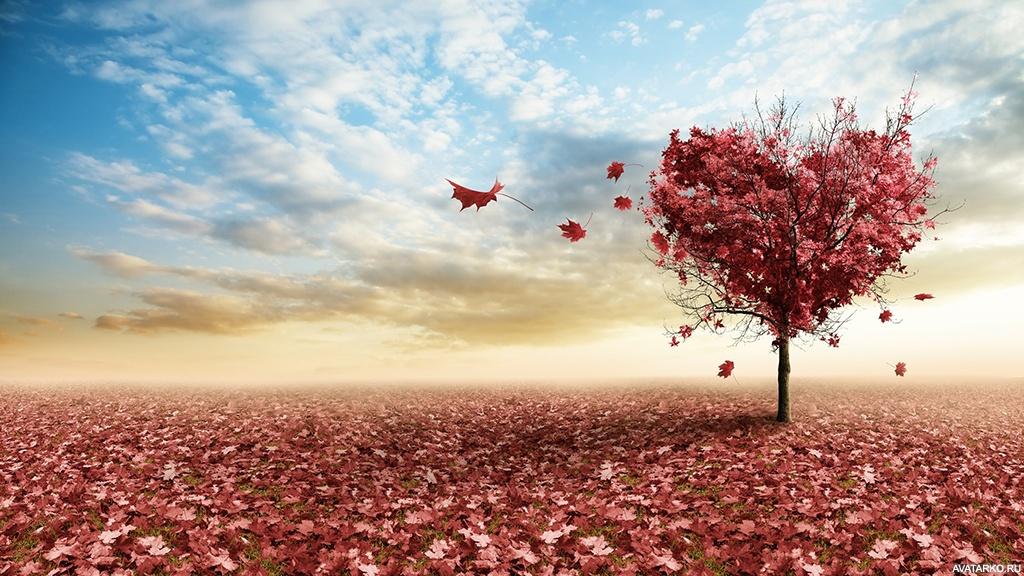 Дерево с красными листьями и кроной в форме сердца — Фото ...