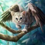 http://avatarko.ru/usergallery/2/avatar393553FBz6.jpg